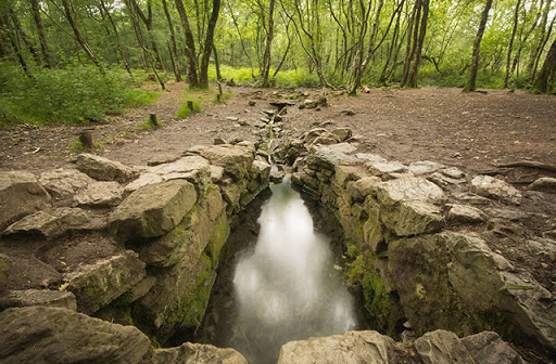 Broceliande Forest. Brittany, France.